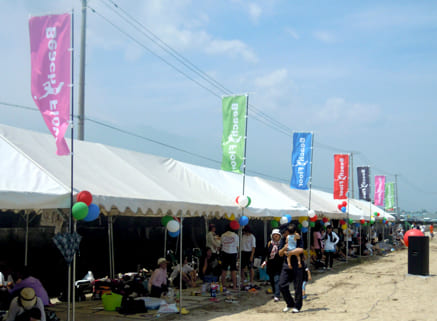 Beach Sports Festival